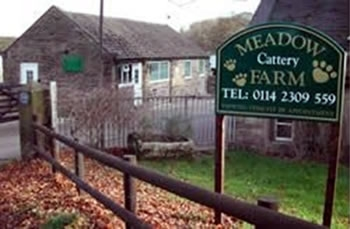 Meadow Farm Cattery Sheffield, South Yorkshire.